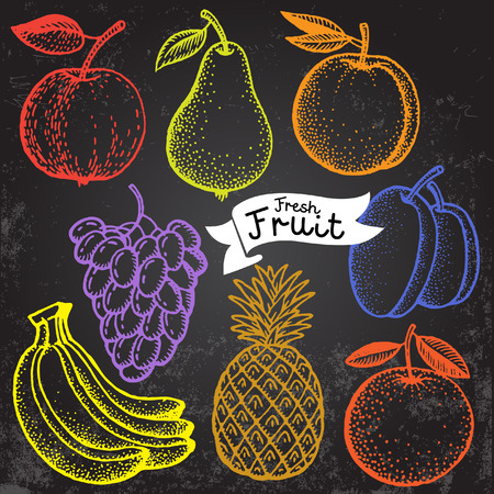 Set of freehand drawing fruit in vintage style.