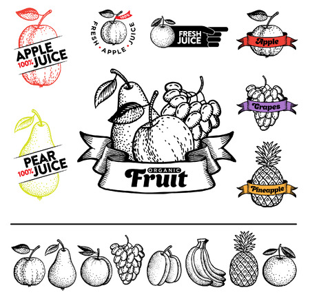 Set of fruit and elements in vintage style for labels and badges for drinks bar menu or shop.