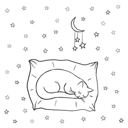 Cute sleeping cat on the pillow. Stars in the night sky, baby doodle. Coloring Pages. Cartoon character cat, childish outline illustration. Hand drawn vector, kids fabric, textile, childrens packaging Illustration