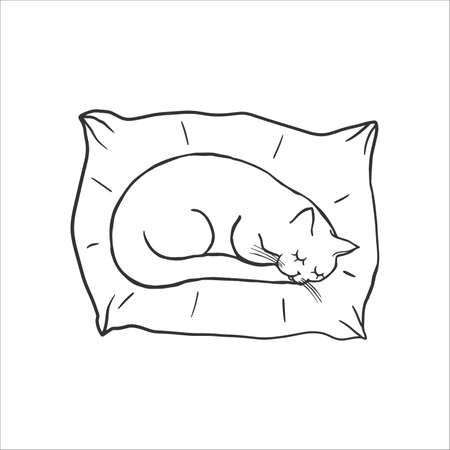 Cute sleeping cat on the pillow. Baby doodle. Coloring Pages. Cartoon character cat, childish outline illustration. Hand drawn vector, kids fabric, textile, childrens packaging, childishly drawn