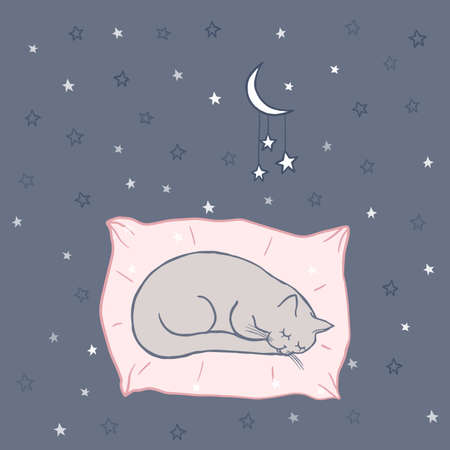 Cute sleeping cat on the pillow. Stars in the night sky, doodle. Cartoon character cat, childish illustration. Hand drawn vector illustration, kids fabric, textile, children's packaging, baby pattern