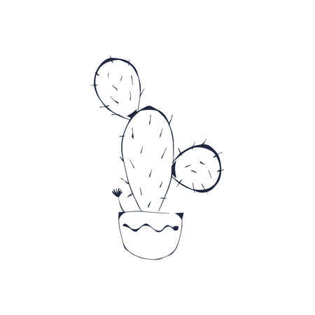 Cactus, succulent plant black outline hand drawn isolate on white background. Sketch, doodle cactus in a pot on a white background. Home plant, prickly cactus. Vector cactus coloring page illustration