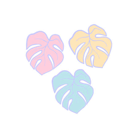 Exotic plant leaves isolate on white background, tropical floral leaves hand draw. Cartoon monstera leaves vector soft color illustration. Three leaf monstera design elements blue, pink and yellow Illustration