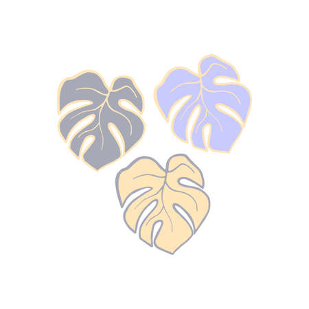 Exotic plant leaves isolate on white background, tropical floral leaves hand draw. Cartoon monstera leaves vector soft color illustration. Three leaf monstera design elements blue and yellow