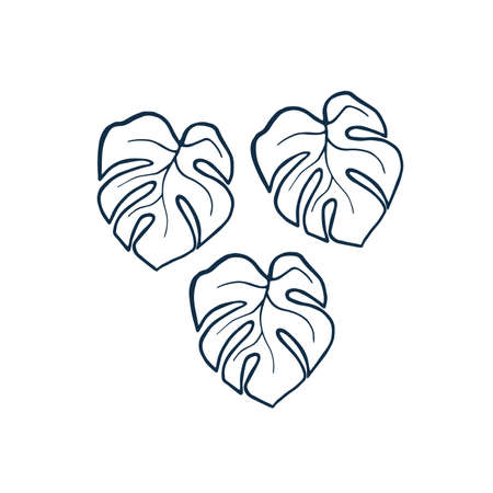 Exotic plant leaves isolate on white background, tropical floral leaves hand draw shape. Cartoon monstera leaves outline vector monochrome illustration. Art line three leaf monstera design elements