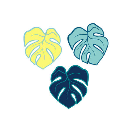 Exotic plant leaves isolate on white background, tropical floral leaves hand drawn. Cartoon monstera leaves vector color illustration. Three leaf monstera design elements blue and yellow