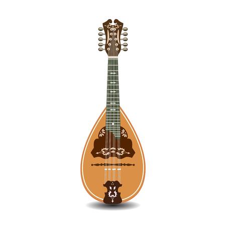 the resonator: Vector illustration of mandolin isolated on white background.