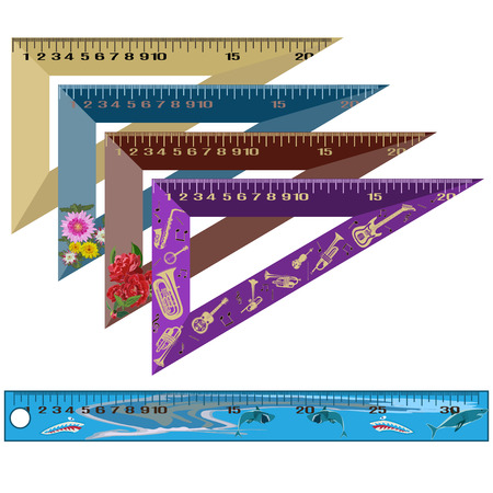 Vector set of school rulers in flat style Illustration