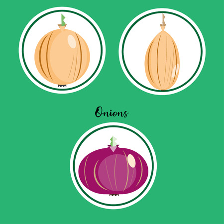 Set of yellow and red onions icons in flat style illustration.