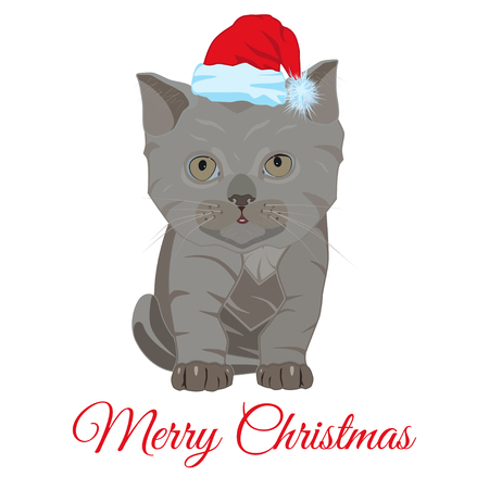 Cute sad little kitten in Santa hat vector flat illustration