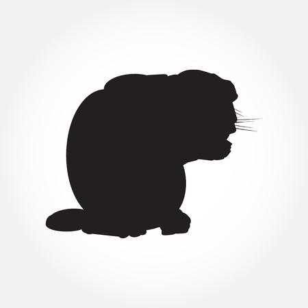 Cat black silhouette on white vector illustration