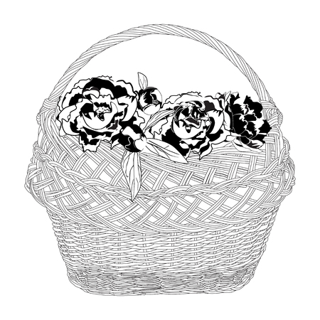 Wicker basket full of peony flowers. Vector black and white illustration.