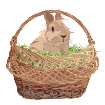 Cute decorative rabbit in wicker basket, vector flat illustration