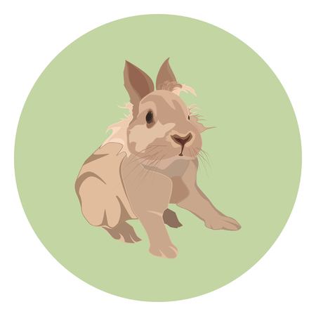 Cute decorative rabbit, vector flat style design illustration  イラスト・ベクター素材