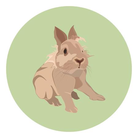 Cute decorative rabbit, vector flat style design illustration Illustration