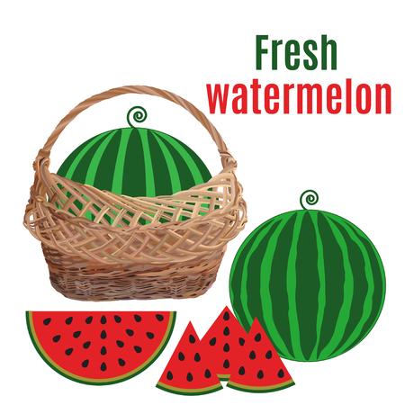 Wicker basket with watermelon, vector flat illustration