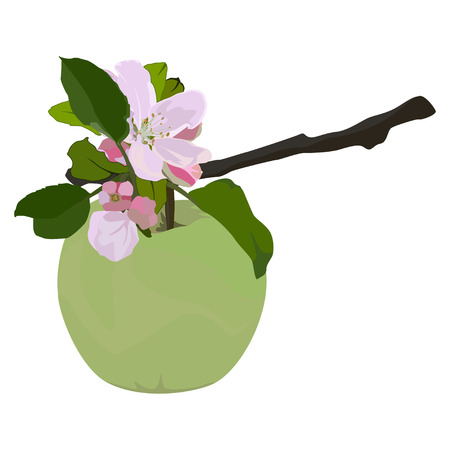 Green apple and branch in blossom, vector flat isolated illustration