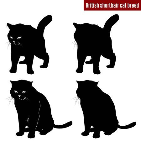 Cat black silhouettes on white background, vector illustration
