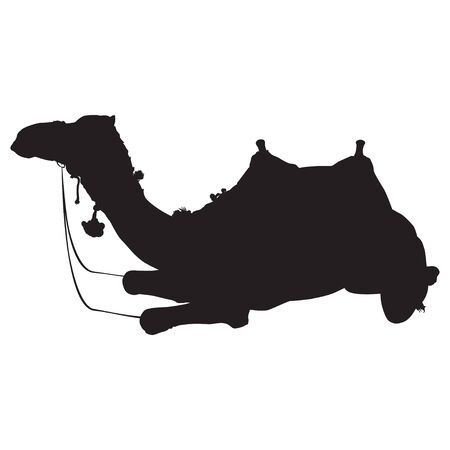Arabian camel dromedary silhouette vector isolated illustration