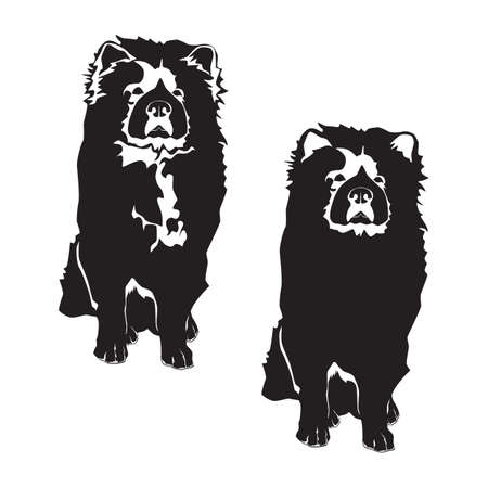 Chow chow black silhouette, vector illustration isolated on white background.