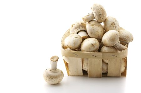 bast basket: Porcelain agarics in retail bast basket isolated on white background.