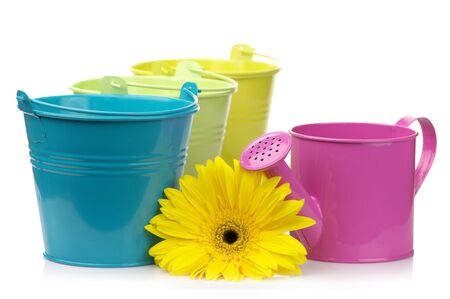 Three colorful buckets, watering can and gerbera isolated on white background. photo