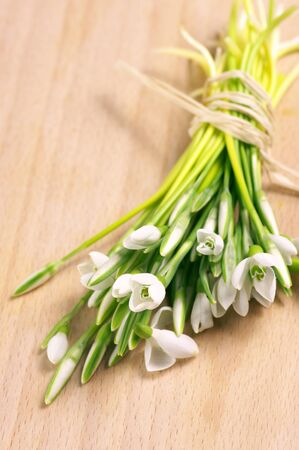 Bunch of fresh snowdrops on wooden surface. photo