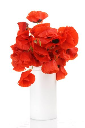 Bouquet of poppies in white vase isolated on white background. photo