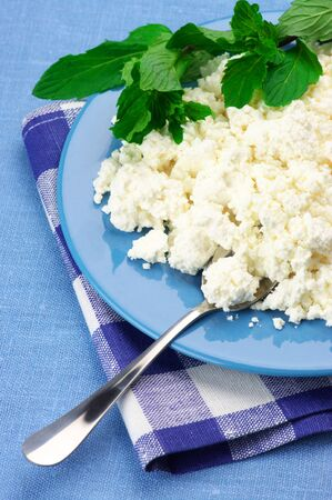 Cottage cheese with mint in blue plate with checked napkin. photo