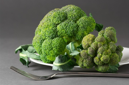 Raw broccoli in white plate on gray background. Stock Photo