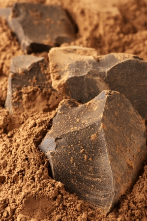 Chocolate ingredients: cocoa solids and cocoa powder close-up. Stock Photo - 17722951