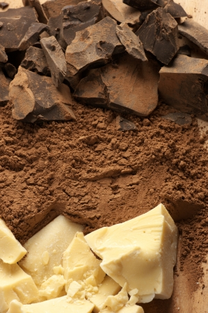 Chocolate ingredients: cocoa solids, cocoa oil and cocoa powder close-up. photo