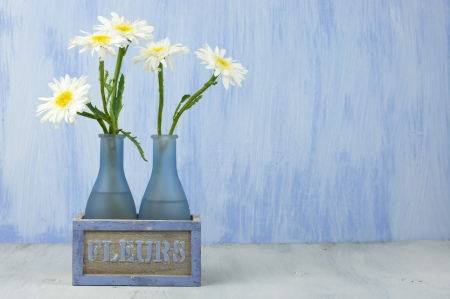 gerber daisy: Daisy bouquet in vase on grunge background. Stock Photo