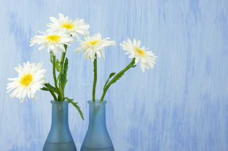 Daisy bouquet in vase on grunge background. photo