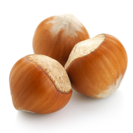 Group of hazelnuts isolated on white background. photo