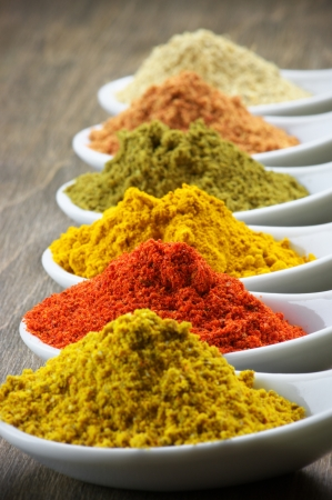 Assorted powder spices close-up.  photo