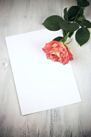 Rose and blank sheet on vintage wooden table. photo