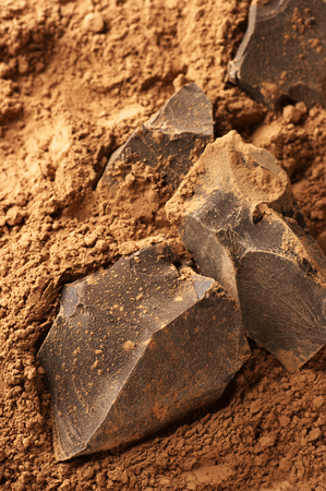 Chocolate ingredients: cocoa solids and cocoa powder close-up. photo