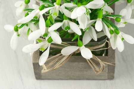 Snowdrops bouquet in rustic vase on wooden background. photo