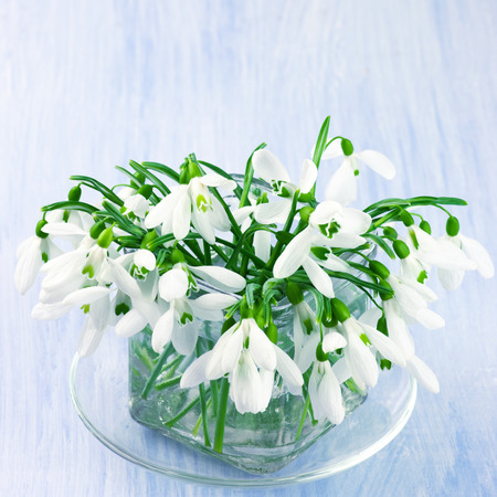 Snowdrops bouquet in glass vase on blue wooden background. photo