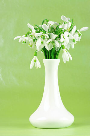 Snowdrops in white vases on green background. photo