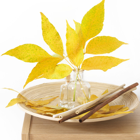 Wooden shelf with autumn bouquet and decorative elements on white background. photo