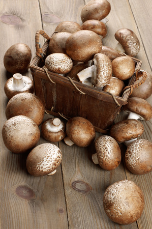 bast basket: Brown cap mushrooms in bast basket and around on rustic wooden background.