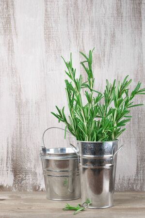 vegetable tin: Vintage galvanized buckets with rosemary bunch on rustic wooden background with copy space. Stock Photo
