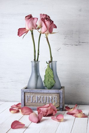 wilted: Wilted roses in rustic vase and fallen petals on wooden background. Vintage stylized, filtered image.
