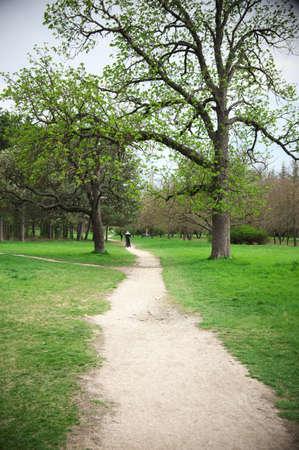 receding: Spring park with receding path.