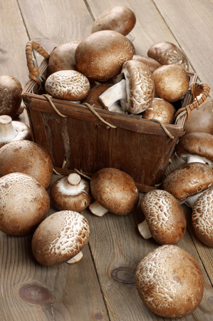 bast: Brown cap mushrooms in bast basket and around on rustic wooden background.
