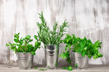 flavoring: Vintage galvanized buckets with flavoring greens on rustic wooden background with copy space.
