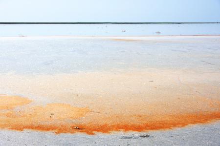 carotene: Unusual Koyashskoye salt lake with crystallized salt orange color as result of carotene released of microscopic algae. Crimea. Stock Photo