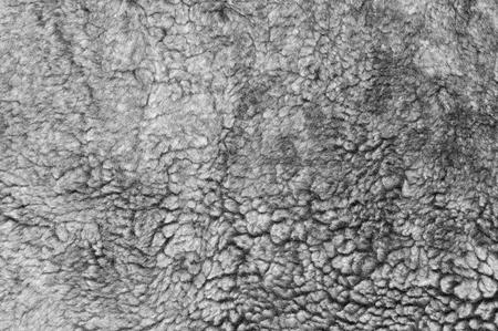 Natural gray sheepskin fur texture as background. Stock Photo